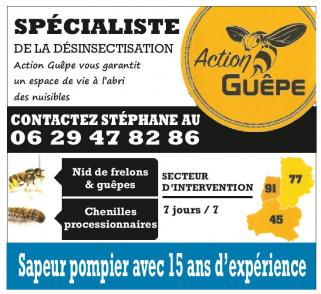 Action guepe
