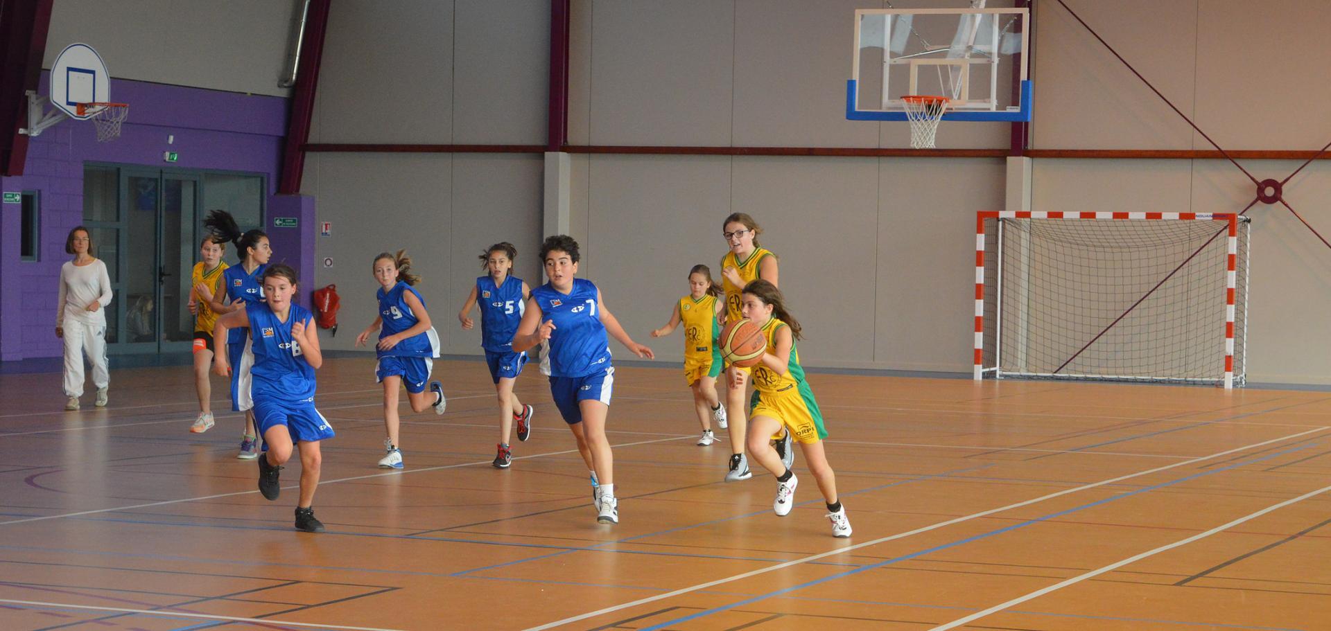 Basket esf 77 2