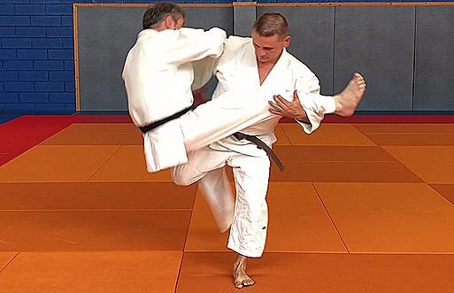 Jujitsu 3