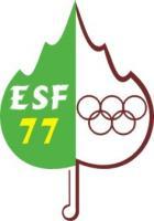 Logo comite ESF 77