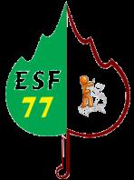 Logo muscul