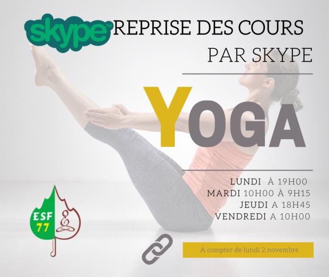 Cours par skype